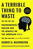 A Terrible Thing to Waste: Environmental Racism and
