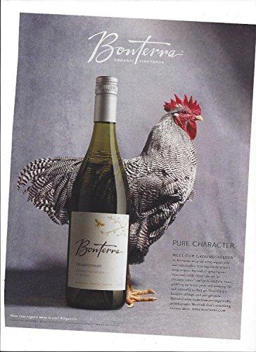 Pure Chardonnay (MAGAZINE AD For 2014 Bonterra Chardonnay Pure Character Chicken Large Ad)
