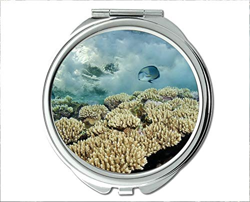 (Mirror,Compact Mirror,fish eyes theme of Pocket Mirror,portable mirror 1 X 2X Magnifying)