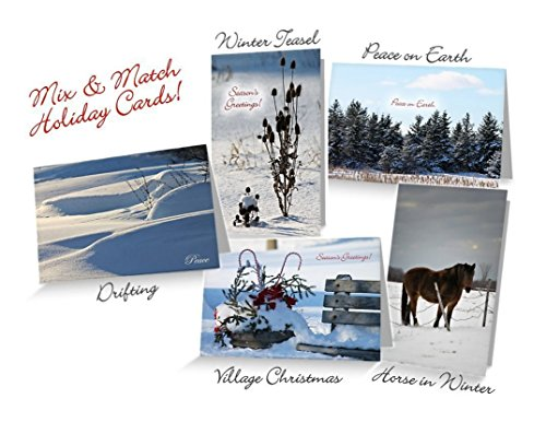 holiday-greeting-cards-assorted-mix-match-4-8-or-12-blank-inside-orig-fine-art-photography