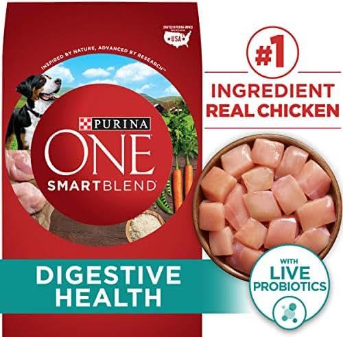Purina ONE Probiotics, Natural Dry Dog Food, Smartblend Digestive Health Formula - 31.1 lb. Bag