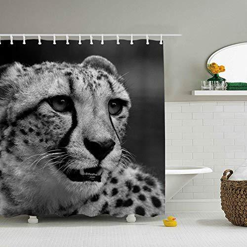 Cheetah Bathroom Accessories - Nicholas Dunlop Animal Cheetah Cats in Water Shower Curtain Set with Hooks 60