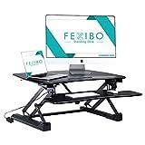 FEZIBO Electric Standing Desks Sit To Stand Desk Wide Platform Conquer Desk Riser - 36'' Wide,Black
