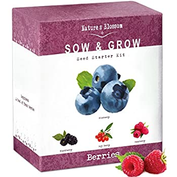 Natureu0027s Blossom Fruit Growing Kit. The Beginneru0027s Set To Grow 4 Types Of  Berries From
