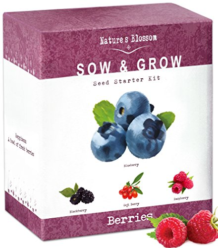 Nature's Blossom Fruit Growing Kit. The Beginner's Set to Grow 4 Types of Berries From Seed - Raspberries ; Blueberries ; Goji Berry ; Blackberries. Contains Planting Pots, Soil & Gardening Guide (Strawberry Seeds Grow)