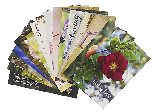 20 Postcards - Christian Scripture Inspirational Bible Verses - Floral Glossy Photographic Designs - 4 x 6 (Postcards Inspirational)