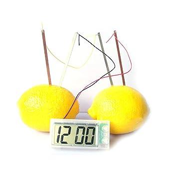 kocykoi Patata Patata Reloj DIY Kit accionado Reloj Digital Fruta para niños Hijos de Ciencia Experiencia de Aprendizaje Juguetes: Amazon.es: Hogar