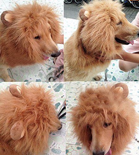 [Vvhome Pet Costume Dog Hairpiece Lion Wig with Ears (light brown)] (Lion Costume For Dog)