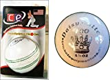 CE T20 Daisy Cutter Leather Cricket ball by Cricket Equipment USA 2016 (White)