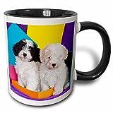 3dRose 3dRose Two Havanese puppy dogs by colors - US05 ZMU0291 - Zandria Muench Beraldo - Two Tone Black Mug, 11oz (mug_142961_4), , Black/White