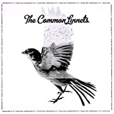 Common Linnets by Common Linnets