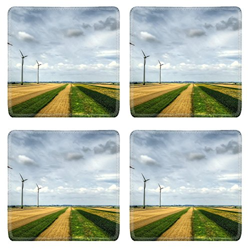 MSD Natural Rubber Square Coasters Set of 4 IMAGE of field nature blue landscape sky
