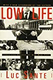 Low Life: Lures and Snares of Old New York