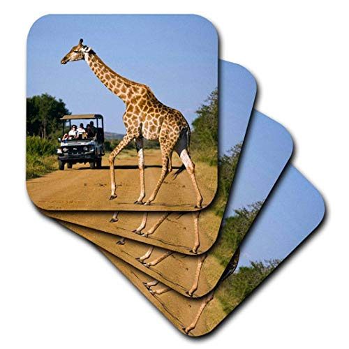 3dRose CST_209373_3 Tourists & Giraffe on Road, Madikwe Game Reserve, South Africa. Ceramic Tile Coasters, (Set of 4)