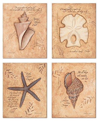 Trendy Inspirational Coastal Shells Sand Dollar Starfish Triton Wonder Shell; Four 8x10in (Starfish Pink)