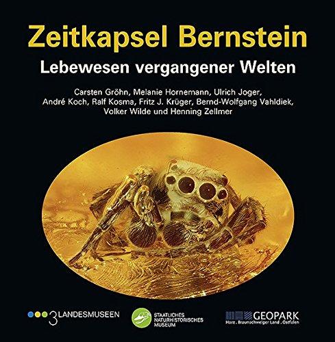 Zeitkapsel Bernstein – Lebewesen vergangener Welten