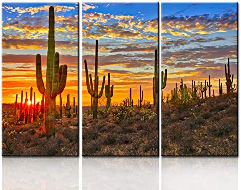 Amazon Com Tumovo House Decorations Living Room Landscape Pictures Arizona Desert Paintings Saguaro Cacti Mountains Sunset In Phoenix Wall Art Canvas Artwork Framed Stretched Ready To Hang 40 X60 Posters Prints