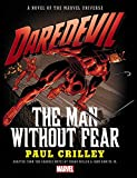 img - for Daredevil: The Man Without Fear Prose Novel book / textbook / text book