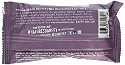 Nature\'s Bakery Gluten Free Bars - Fig - 12 Count