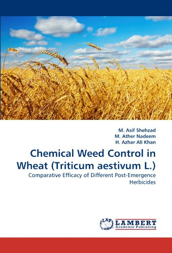 chemical-weed-control-in-wheat-triticum-aestivum-l-comparative-efficacy-of-different-post-emergence-