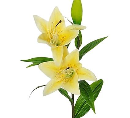 Lameida 5pcs Fleurs Artificielles Branche Unique Fleur De Lys