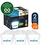 Aqua Optima Evolve 2 year pack, 12 x 60 day water filters - Fit BRITA* Maxtra* (not Maxtra+*) - EVD912