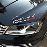 Indiashopers Racing Auto Hood Bumper Sides Windows Car Sticker,29X9Cm