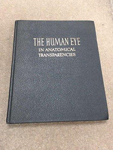 The Human Eye in Anatomical Transparencies