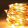 SEG Direct Galaxy String Light Flexible LED String Light with Remote Control (33ft)