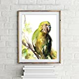 Bird art print, parrot art, wall art print, watercolor painting print, Kakapo bird painting, bird poster
