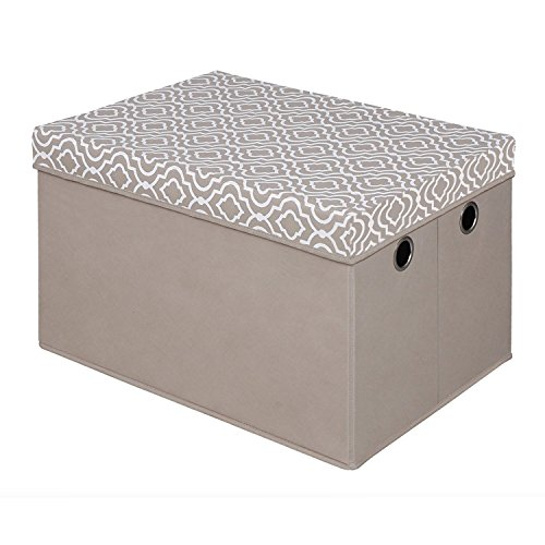 Bintopia Storage Trunk with Removable Lid, Taupe by Bintopia