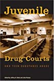 Juvenile Drug Courts and Teen Substance Abuse, Butts, Jeffrey A. and Roman, John, 087766725X
