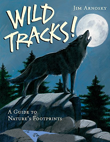 Wild Animal Footprints - 3