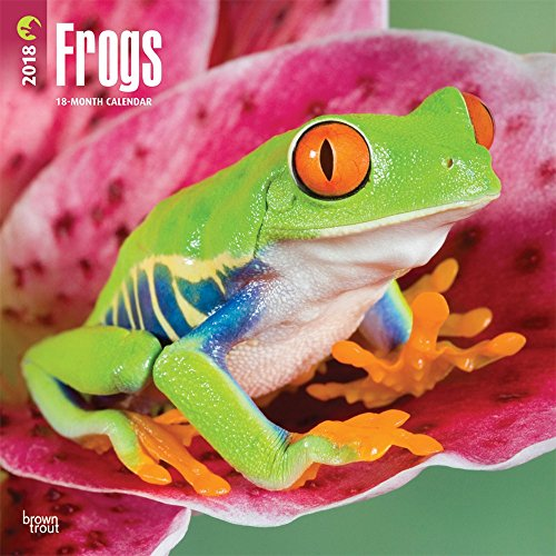 Frogs Wall Calendar 2018 DELUXE {jg} Best Holiday Gift Ideas - Great for mom, dad, sister, brother, grandparents, grandchildren, grandma, gay, lgbtq. Deluxe Amphibian