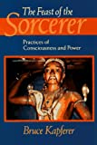 """The Feast of the Sorcerer - Practices of Consciousness and Power"" av Bruce Kapferer"