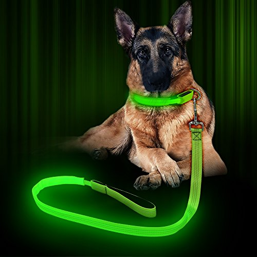 BSEEN LED Dog Leash – USB Rechargeable 47.2 inch 120 cm Reflective Ni