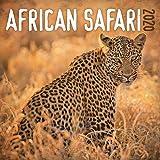 African Safari 2020 Calendar