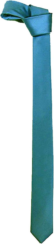 Islander Fashions Mens tinta unita classico raso sottile cravatta adulti Fancy Party Wear Accessory
