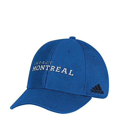 adidas Adult Men Wordmark Mesh Structured Adjustable Hat, Blue, One Size (Retro Slouch Adjustable Hat)