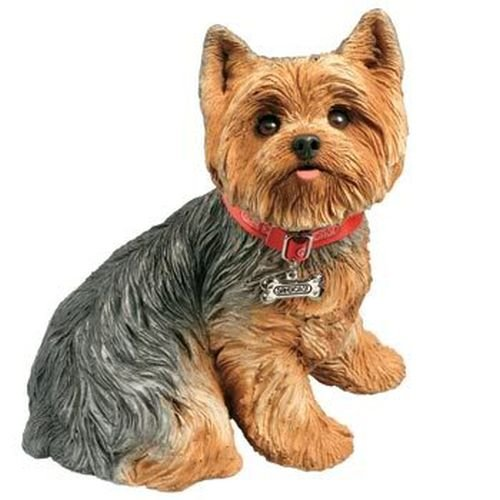 Sandicast Life Size Yorkshire Terrier Sculpture, Sitting Yorkshire Terriers Life