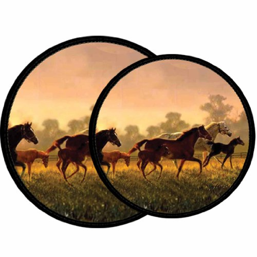 Horse Decor Kitchen (Reston Lloyd Electric Stove Burner Covers, Set of 4, A Brand New Hope All-Over Pattern)