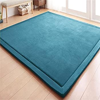 Amazon.com : Luxury Large Bedroom Carpet Coral Velvet Mat Memory ...