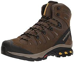 Salomon Men's Quest 4d 3 Gtx Backpacking Boots, Wrenbungee Cord, 11 D Us