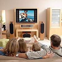 Bewinner Televisor LCD Digital portátil HD TV de 17 Pulgadas DVB ...