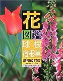 花図鑑 球根+宿根草 (草土花図鑑シリーズ)