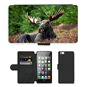 Super Stella Cell Phone Card Slot PU Leather Wallet Case // M00144726 Moose Moose-Rack Male Bull Animal // Apple iPhone 5 5S 5G