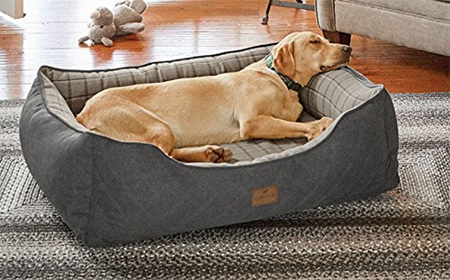 Orvis Memory Foam 2-in-1 Dog Bed/X-Large Dogs 70-100 Lbs, Ch