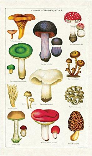 Cavallini Papers Vintage Mushrooms Cotton Tea Towel ()
