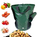 Chrikathy Garden Gallon Planter Double Mouth Bag Growing Vegetables Plant Potato Carrot Onion PE Container Durable Bag Pouch Root Pot Side Window Green