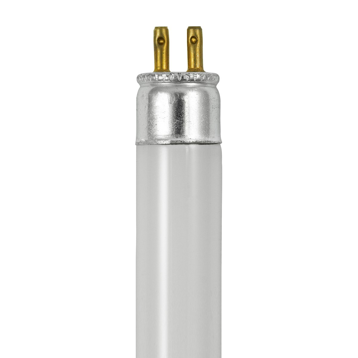 F6T4 CW 8.6 in. Cool White Watts 6W Type T4 Fluorescent Tube Color
